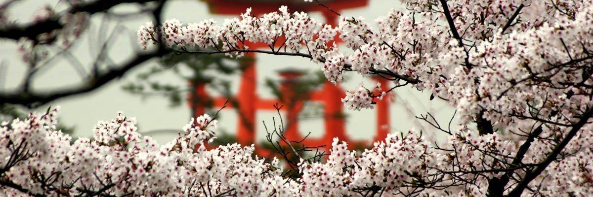 iki-travels-japan-banner.jpg