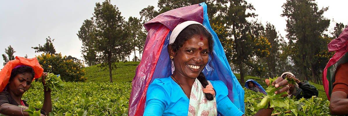 iki-travels-sri-lanka-banner.jpg