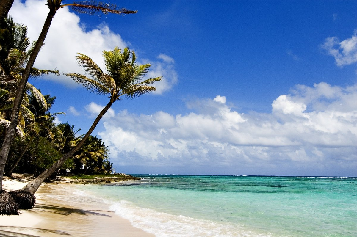 eiland guadeloupe